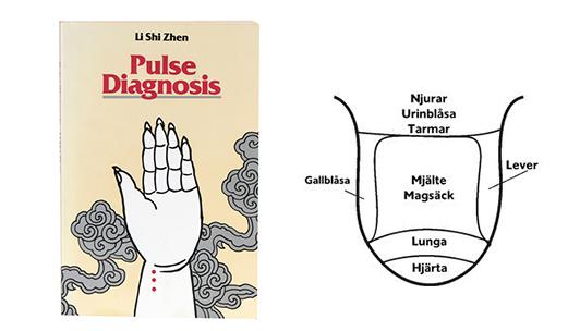pulsdiagnos